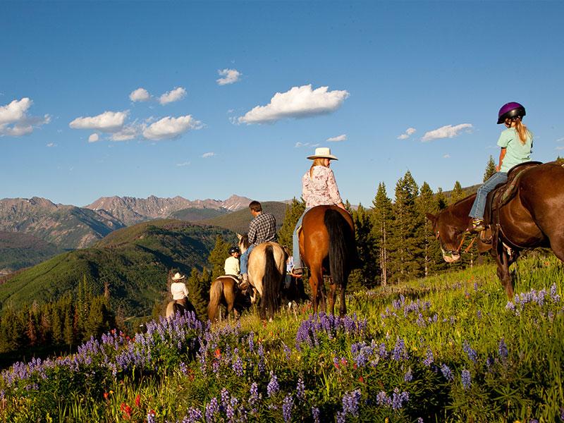 Horseback Riding near Breckenridge