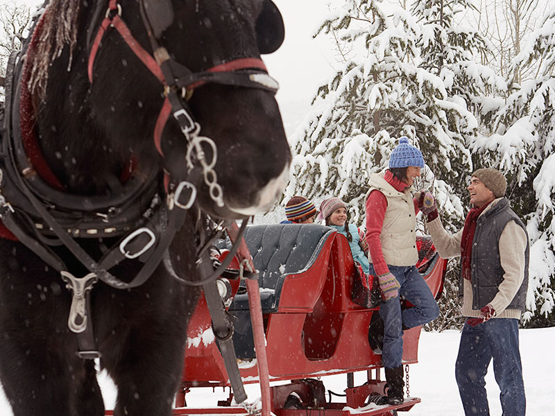 Sleigh ride in Breckenridge